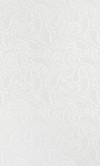 Мини ролета - оконная штора Персия 47 х 175 белый ГП в Орехово-Зуево СтройДвор на Карболите