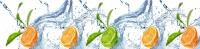 Фартук для кухни ХДФ Элит Фрукты в воде 3 х 610 х 2440 мм в Орехово-Зуево СтройДвор на Карболите