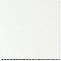 Вагонка пластиковая 100х3000 мм Белая в Орехово-Зуево СтройДвор на Карболите