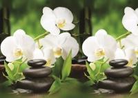 Интерьерная панель (Кухоннный фартук) Белая орхидея 600 х 3000 мм в Орехово-Зуево СтройДвор на Карболите