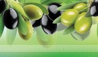 Фартук АБС Оливки и маслины (№209) 600 х 3000 мм в Орехово-Зуево СтройДвор на Карболите